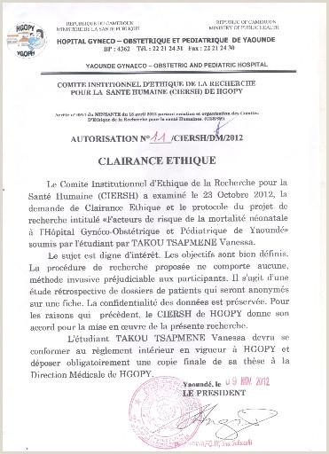 Standard Cv format In Nigeria Pdf Memoire Line Facteurs De Risque De La Mortalité
