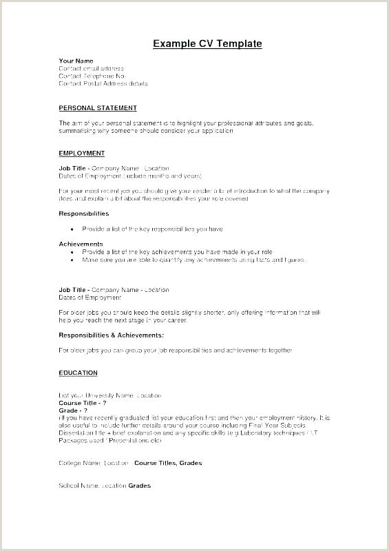 Professional Profile Resume Template Examples For Career Lily Cv