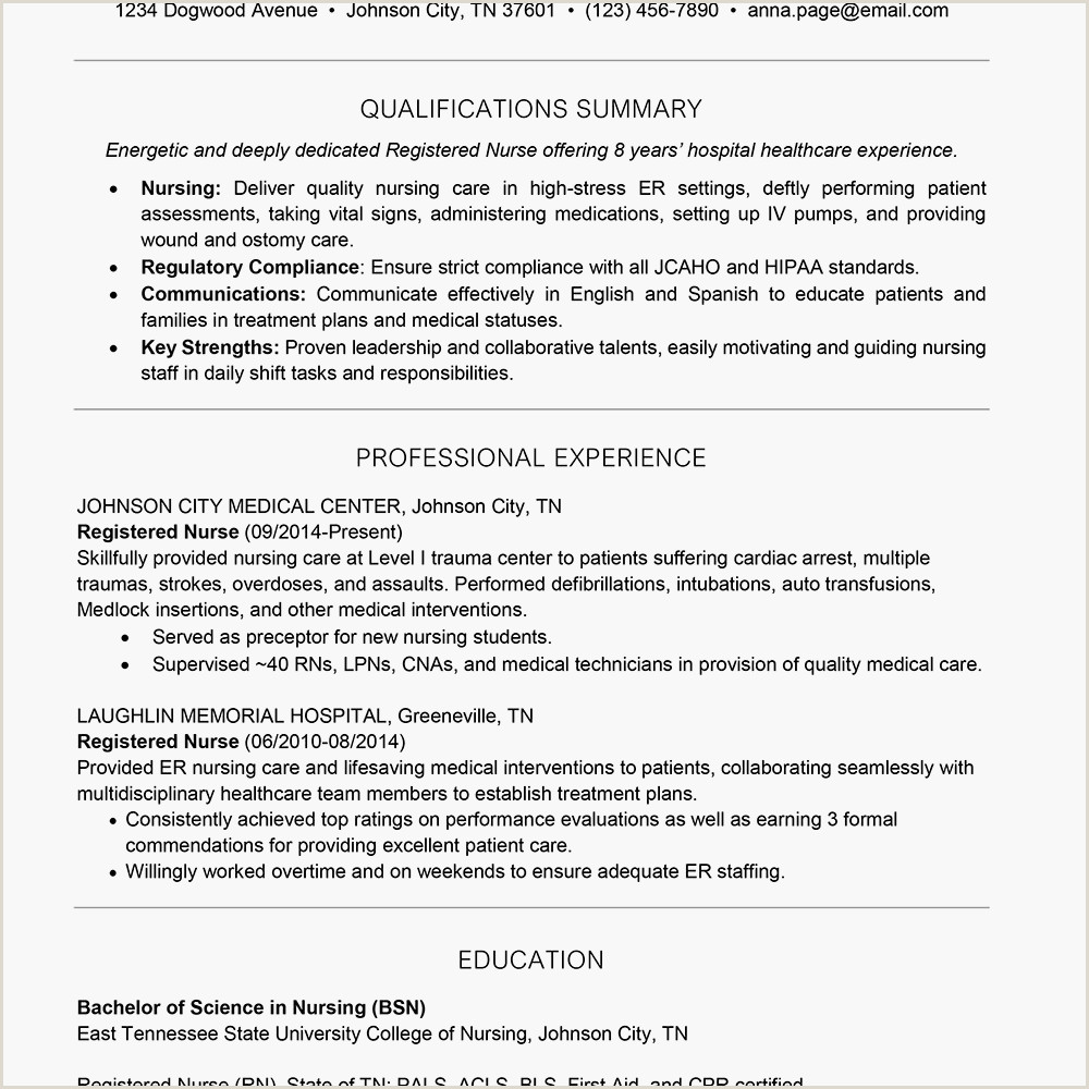 Standard Cv format In One Page How to Write A E Page Resume