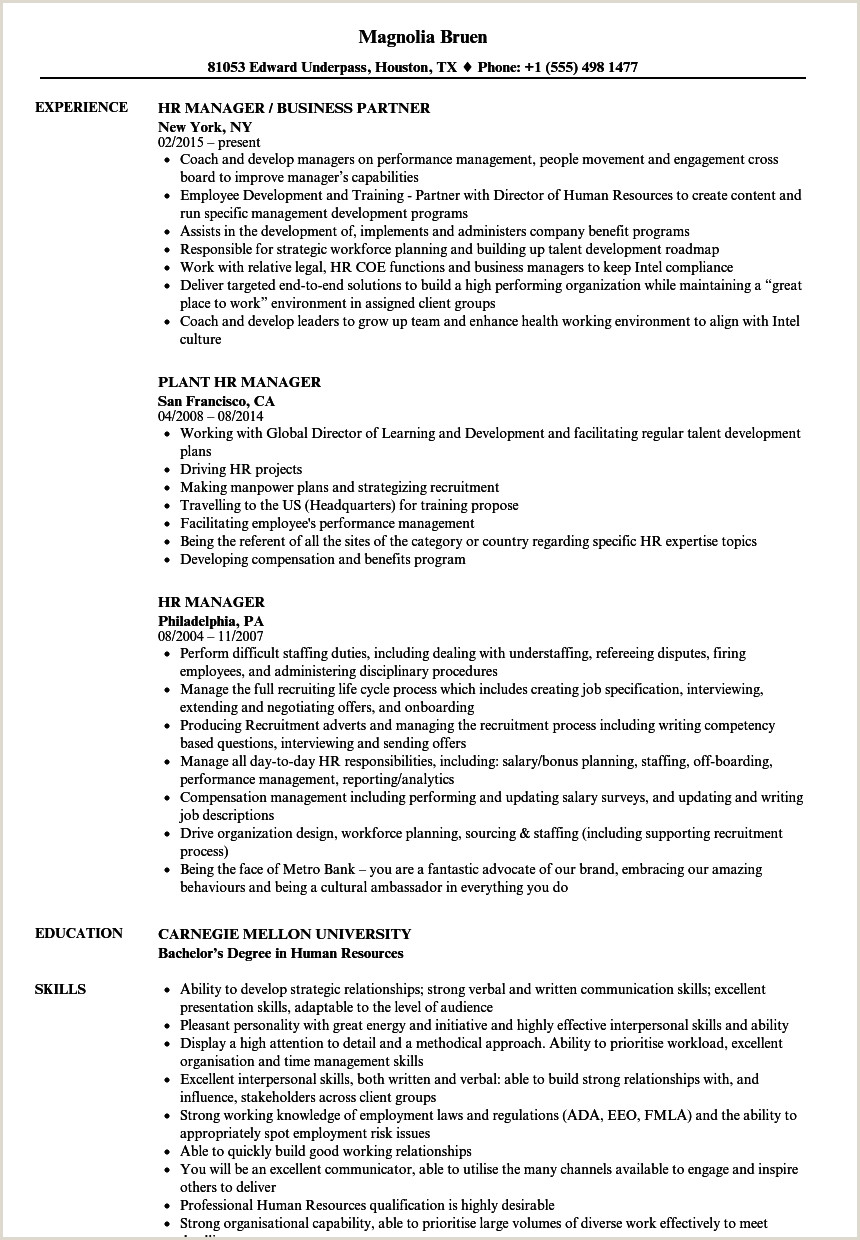 Standard Cv format In Pakistan Hr Manager Resume Samples