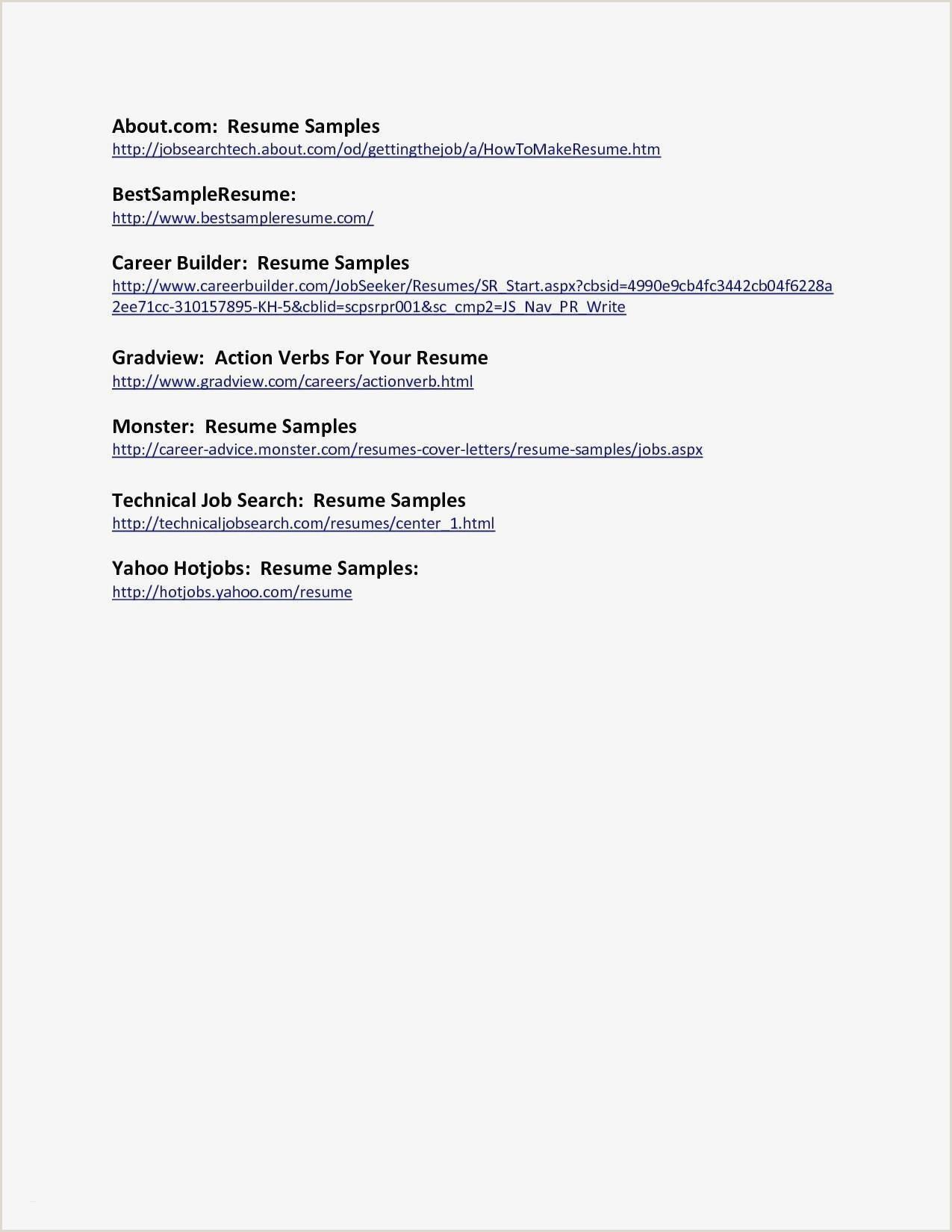 Standard Cv format In Pdf Puter Technician Resume Sample Examples Sample Basic