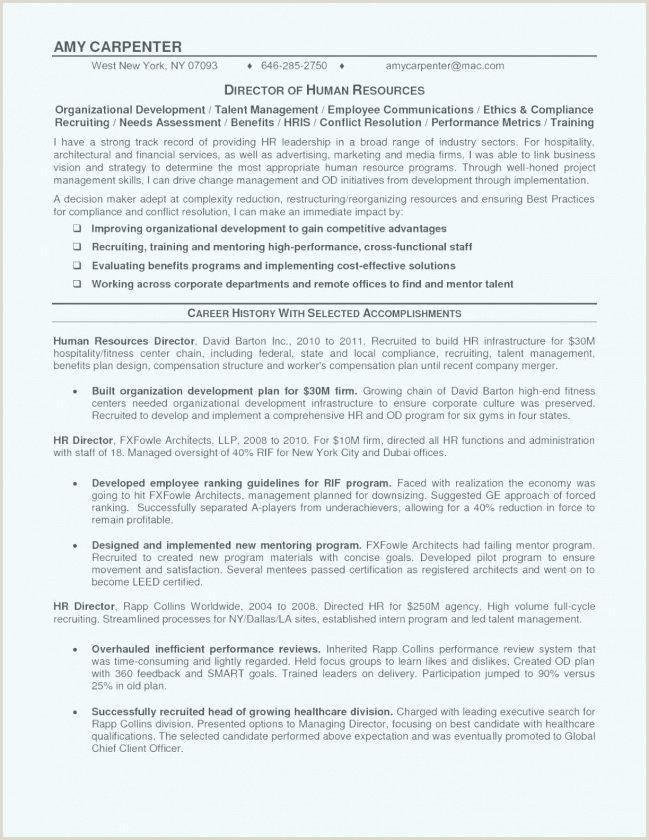 curriculum vitae template doc