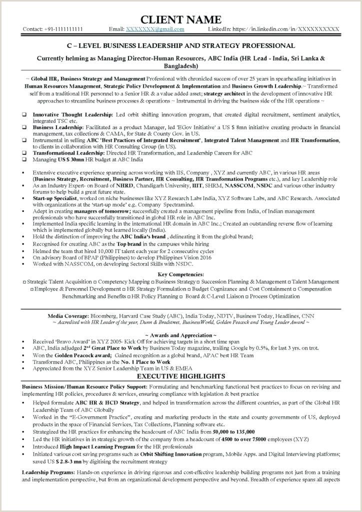 example of executive resume – wikirian