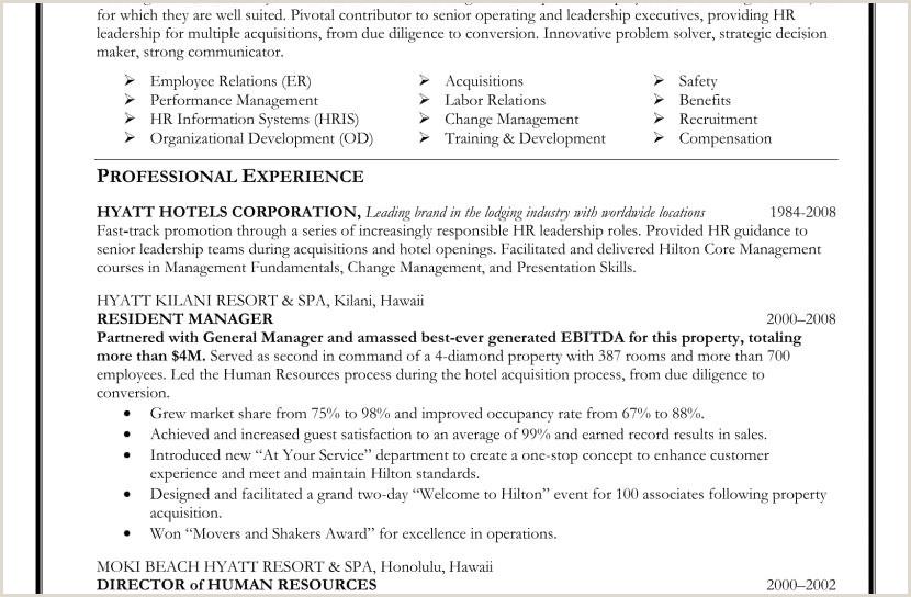Executive Resume Sample Best Glamorous Marketing Executive