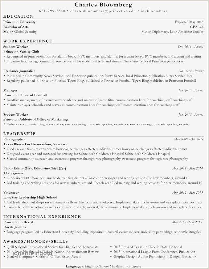 New Curriculum Vitae format Pdf Luxus 71 Best S Resume