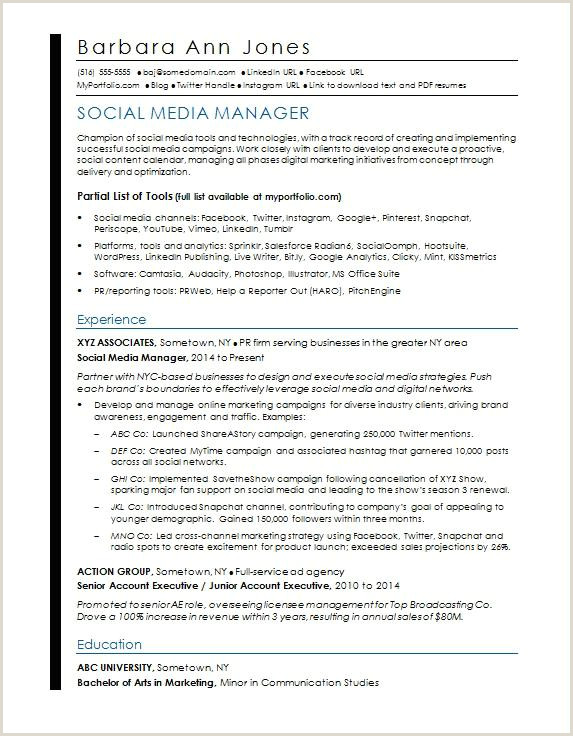 Standard Cv format Pdf for Job social Media Resume Sample