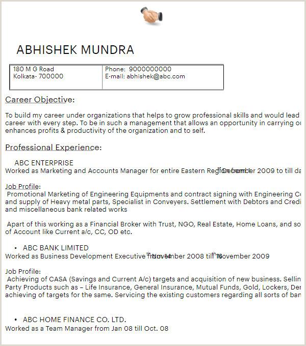 Mise En Page Cv Word De Luxe 316 Microsoft Word Resume