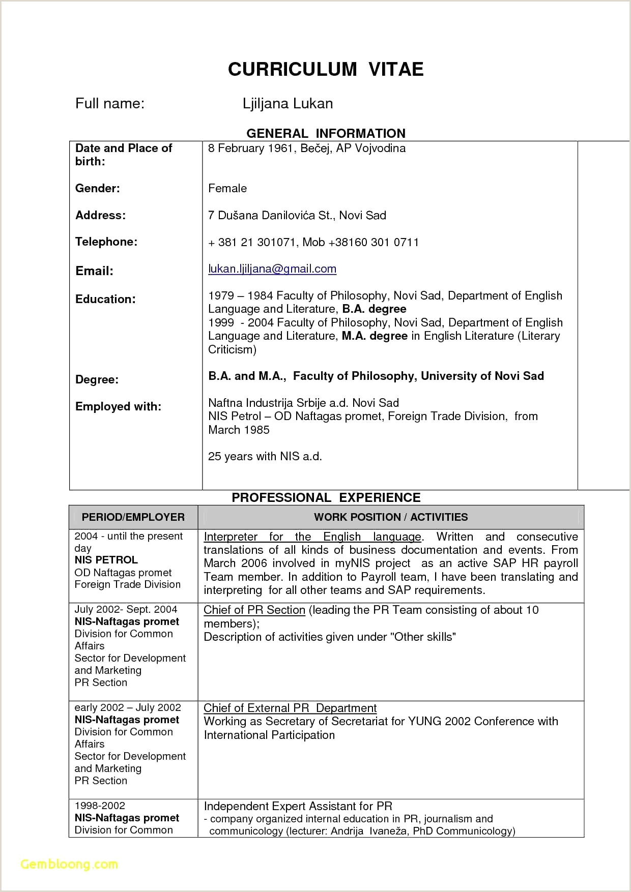 International Cv format Gratuit French Resume Examples