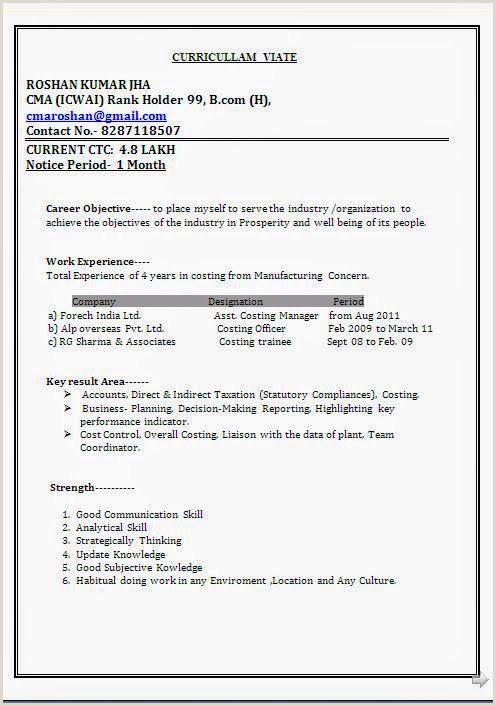 Standard Cv format Pdf In India Curriculum Vitae Word format Sample Template