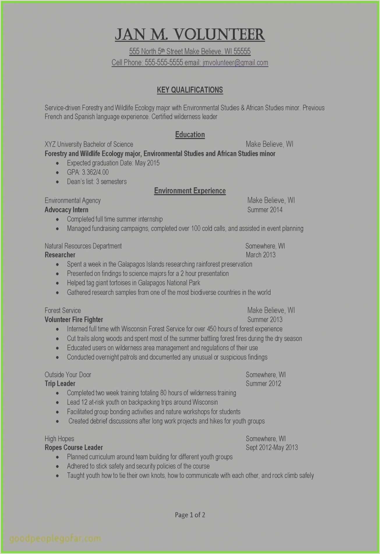 Volunteer Experience Resume Example Professional Volunteer