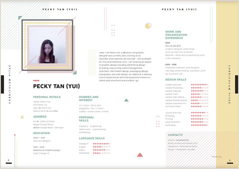 Standard Cv format Sample 15 Superb Cv Examples to Get You Noticed Guru