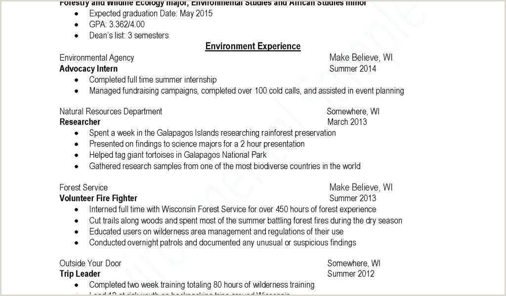 Standard Cv format south Africa 76 Unique S Sample Resume for Law Enforcement