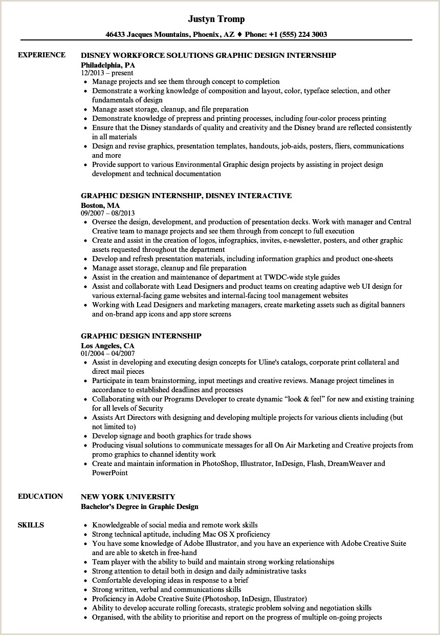 Standard format for Cv Pdf Portfolio Sample Pdf