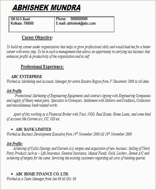 Standard Resume format for Job Pdf 25 Best Resume formats Pdf