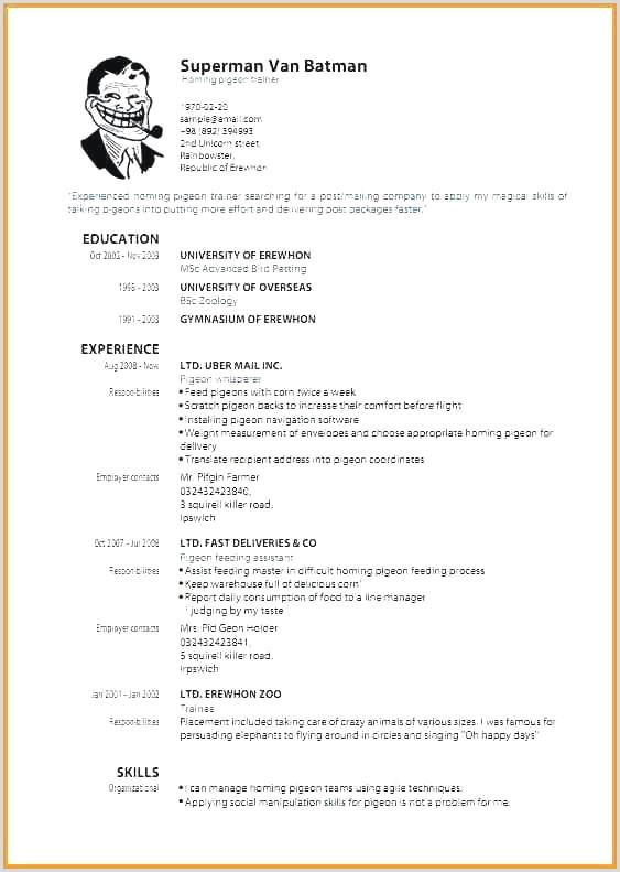 Best Corporate Resume format Elegant Effective Resume format