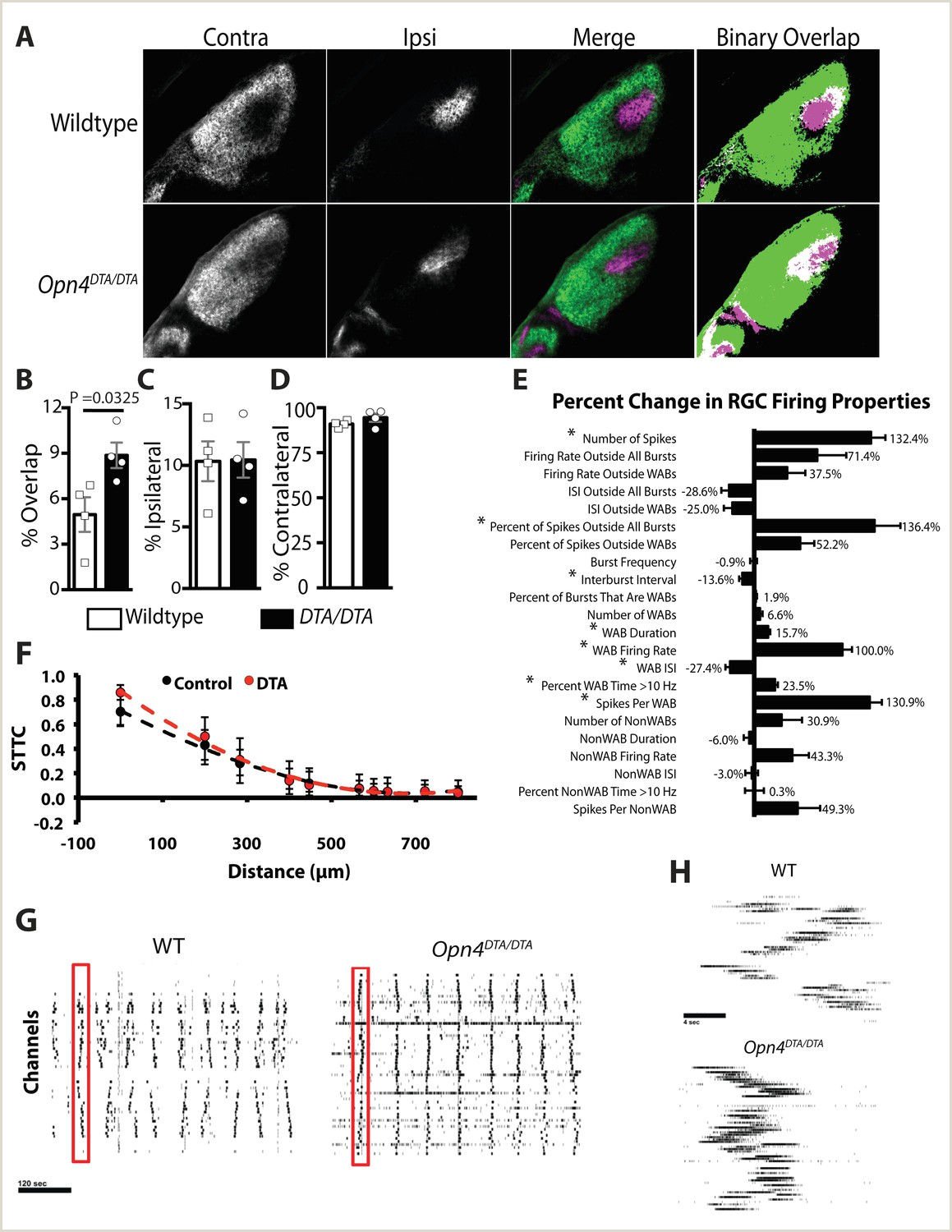 A subset of ipRGCs regulates both maturation of the