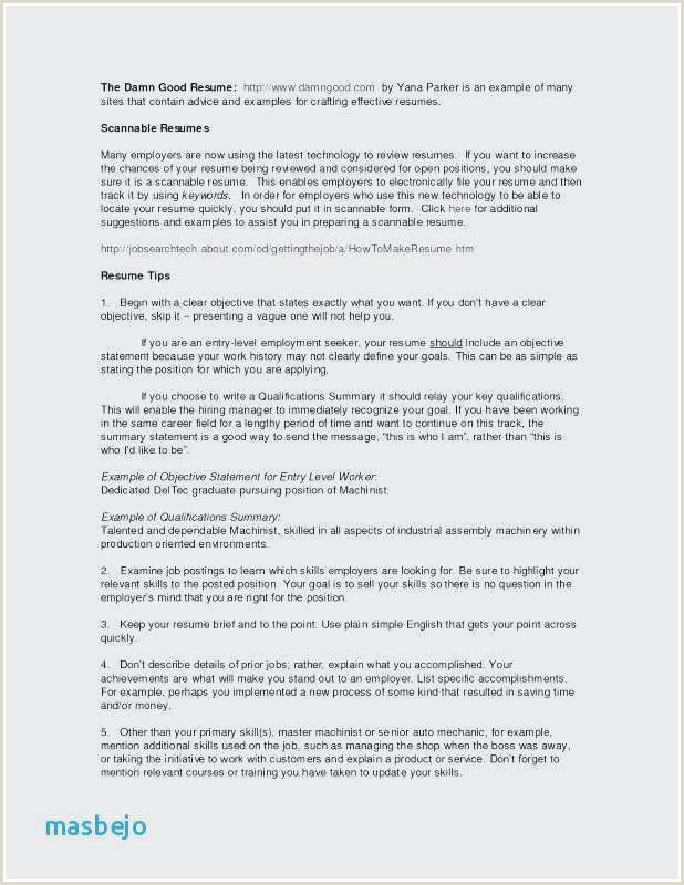 Beautiful Resume Summary Qualifications Examples