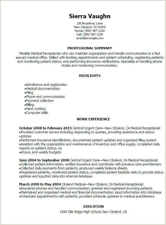 Summary For Receptionist Resume Receptionist Resume Sample – Kizi Games