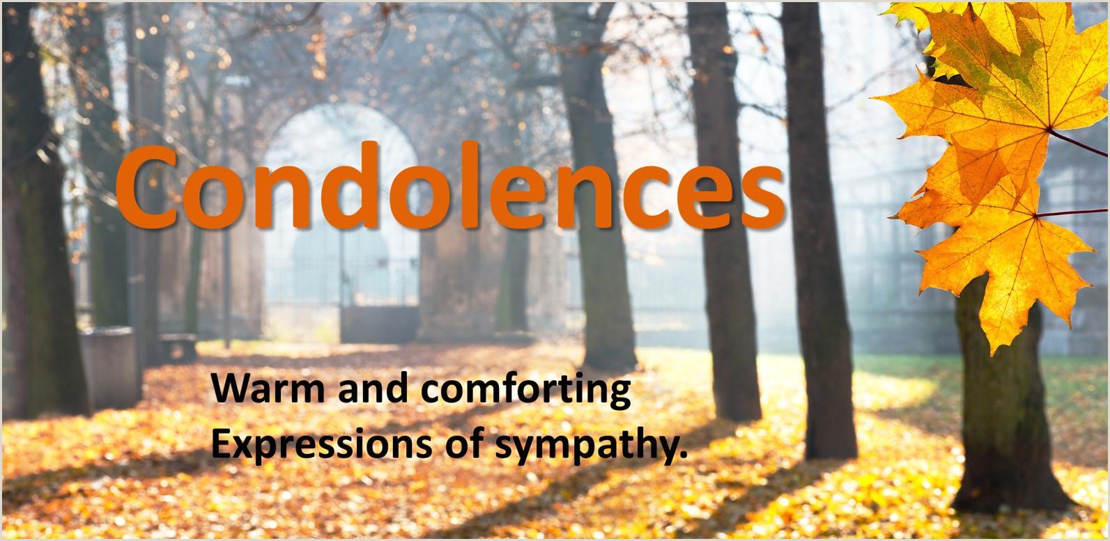 Condolences & Sympathy Messages 250 Examples