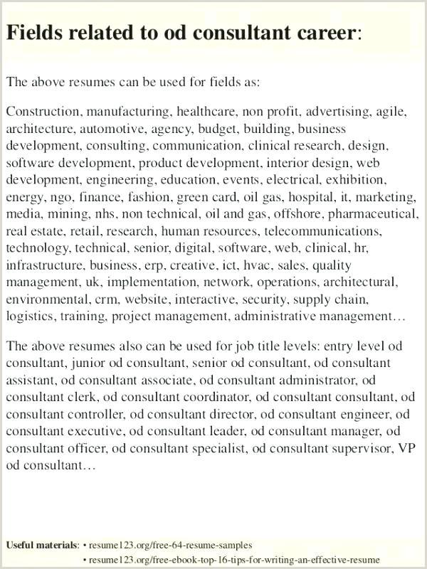 network administrator resume template – infekt