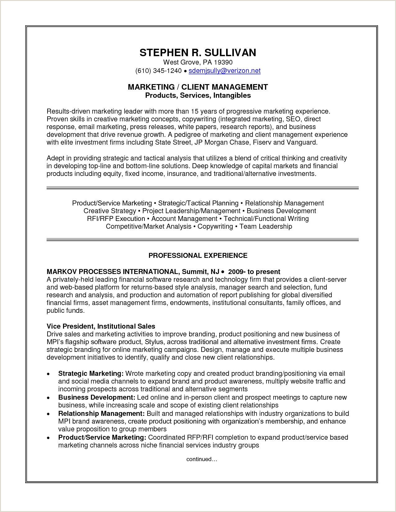 Inspirational Resume format System Administrator