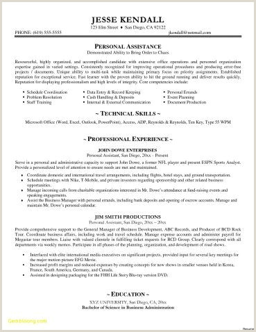 Resume Samples Doc New Executive Resume Templates Word Od