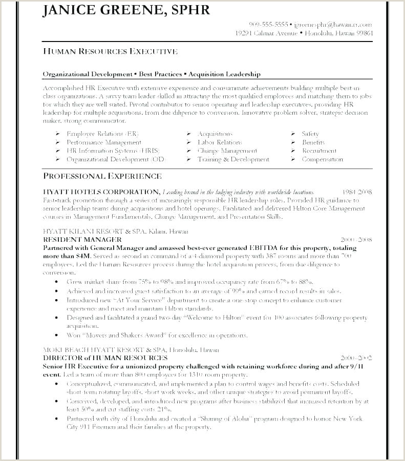 Test Manager Resume It Project Manager Resume Template