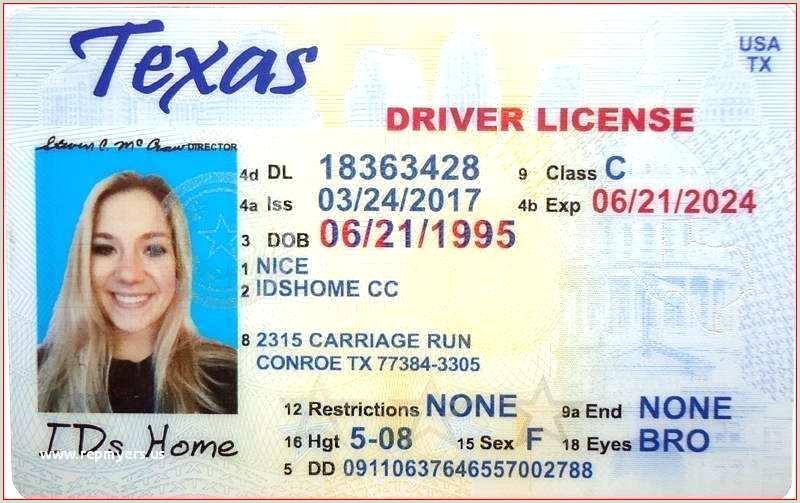 blank drivers license template – copyofthebeautyfo