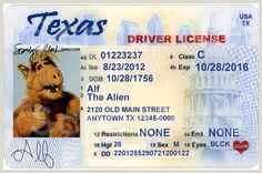 Texas Drivers License Template 12 Best Driver Licence Images