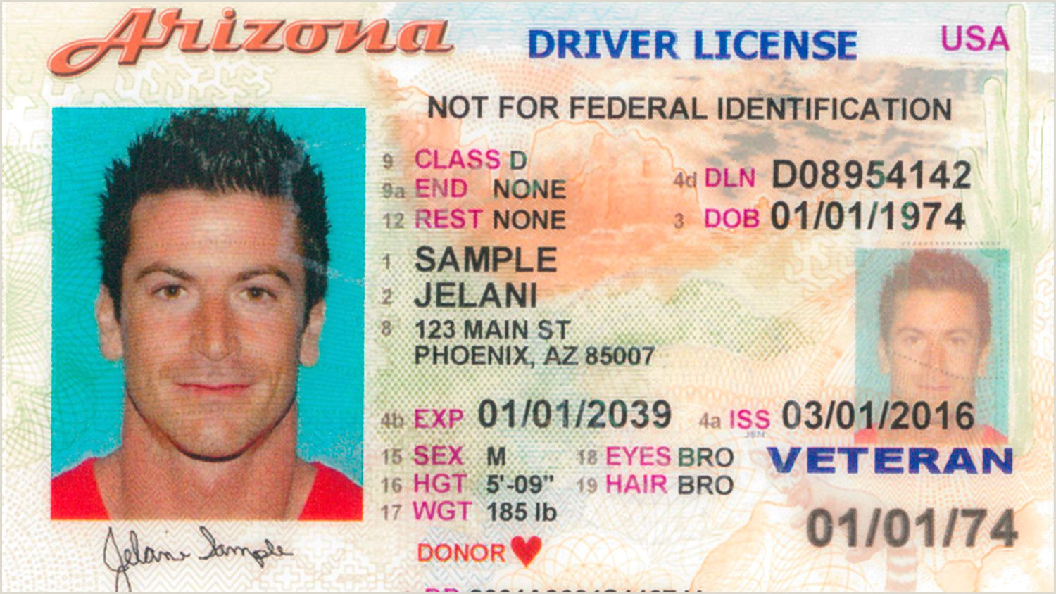 Texas Temp Id Template What Does An Arizona Driver S License Look Like