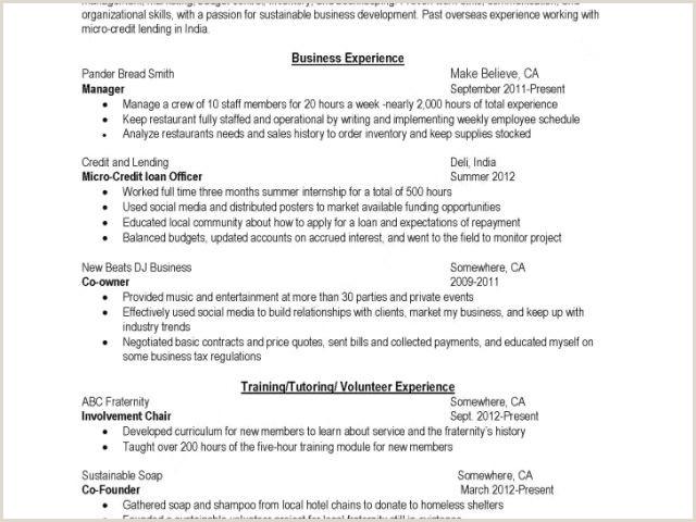 The Best Professional Cv format Munity Facilitator Resume Minimalist Cv Sample Lovely Cv