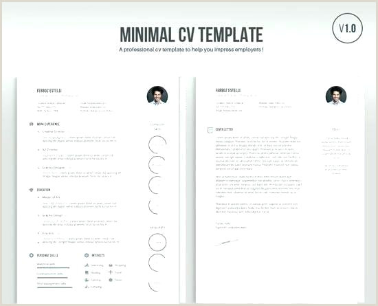The Most Professional Cv format Professional Profile Examples
