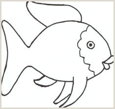30 Best Fish Template images