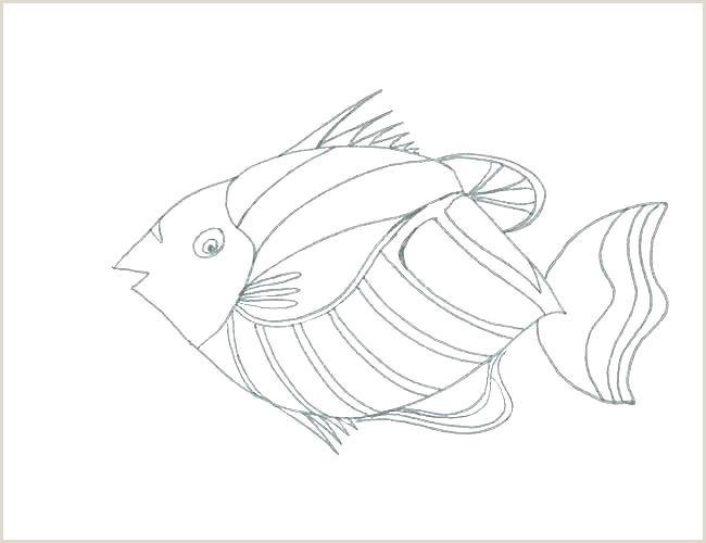The Rainbow Fish Template Fish Shape Template – Hackpress