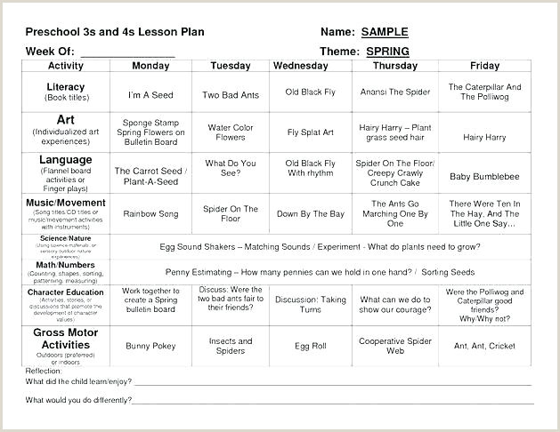 Elementary Lesson Plan Template Classroom Format Free