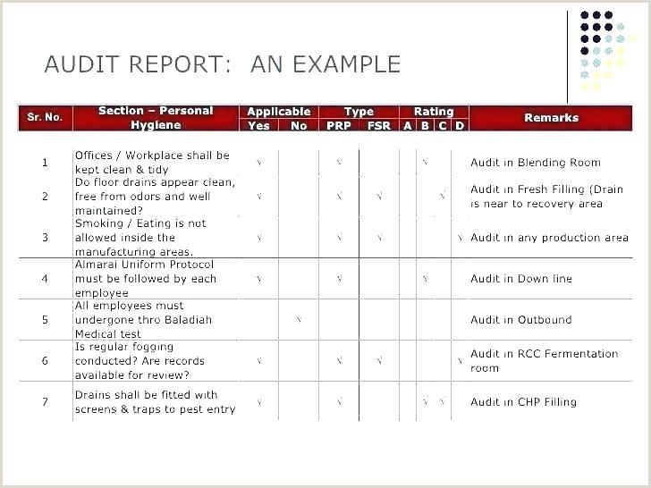 Internal Internal Audit Report Template New Format Control