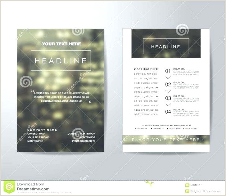 Publisher Brochure Templates Ms Flyer Template New Toy Drive
