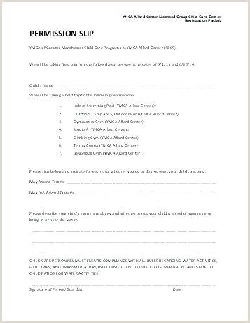 Truck Drivers Trip Sheet Template Design Example Driver Trucker