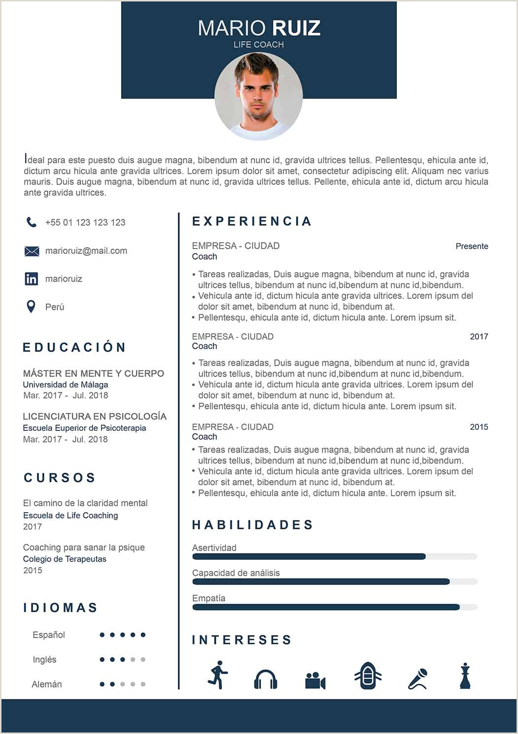 Modelo De Curriculum Vitae Original Modelo De Curriculum