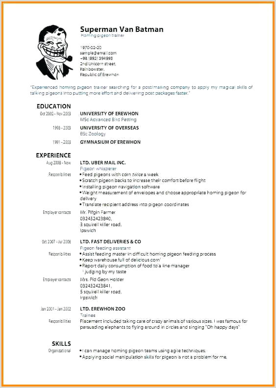 Un Standard Cv format 40 Luxury Standard Cv format for Job Application Image