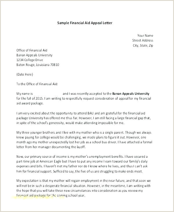 formal appeal letter template