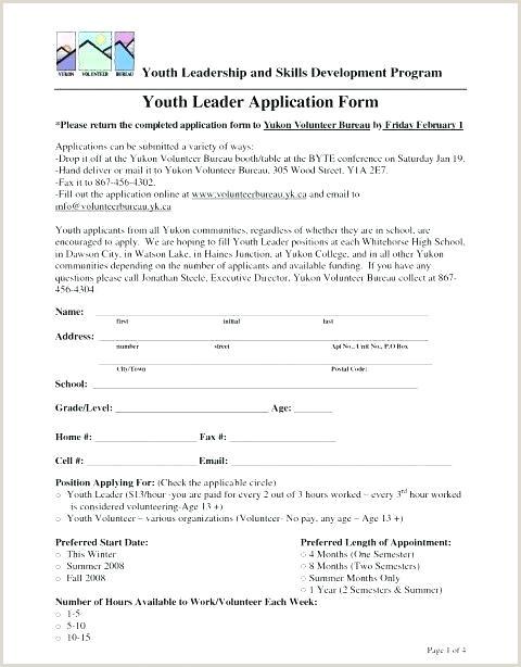 Volunteer Application forms Templates Volunteer Hours form ate Luxury Volunteering Disclaimer