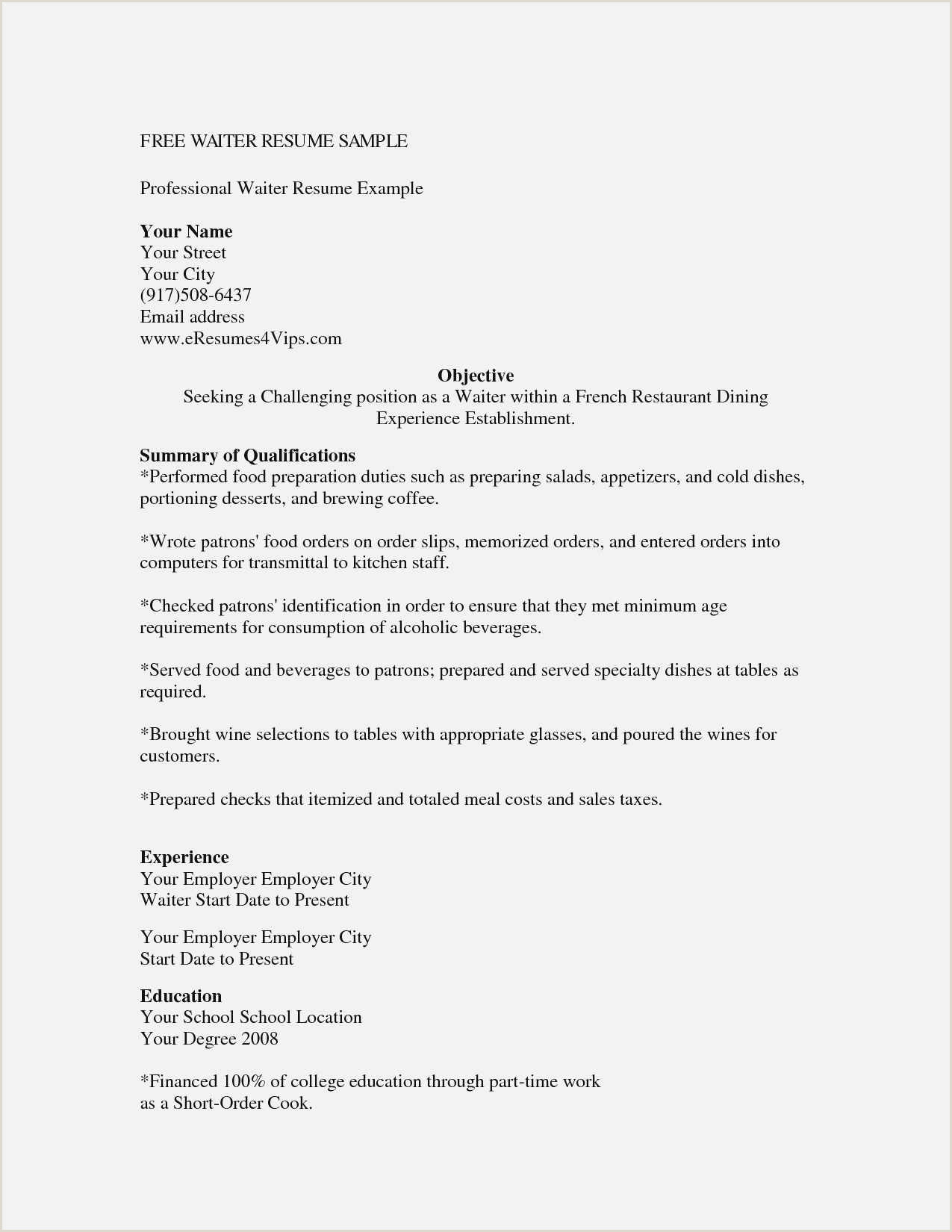Free Collection 59 Server Resume Model