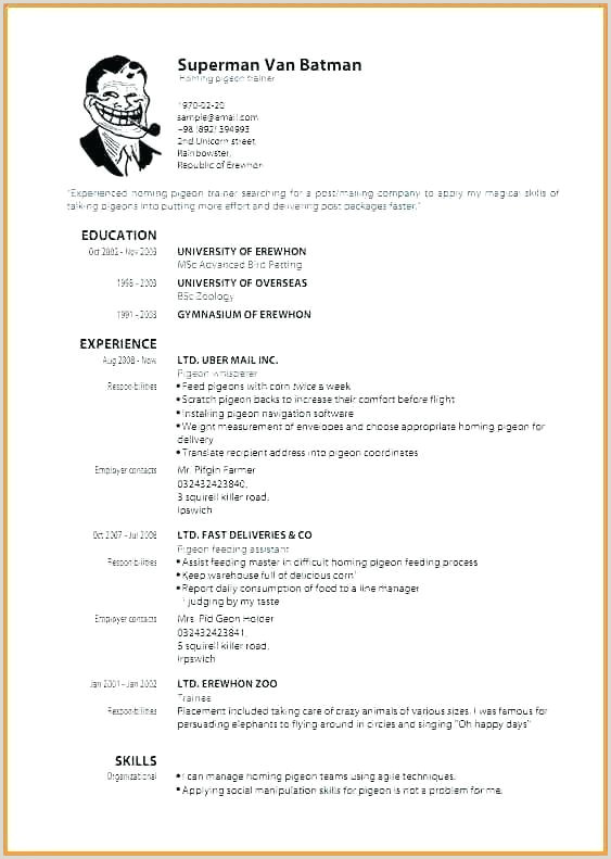 Template Cv Word Exemples Inspirational Creative Resume