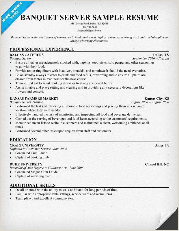 Server Resume Examples Professional Food Server Resume
