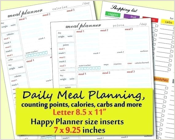 Patient Diet Tracker Template Elimination Spreadsheet Food