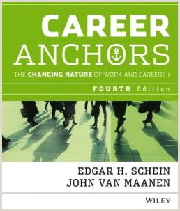 What Factors Have Influenced Your Career Choice Career Anchors Edgar Schein