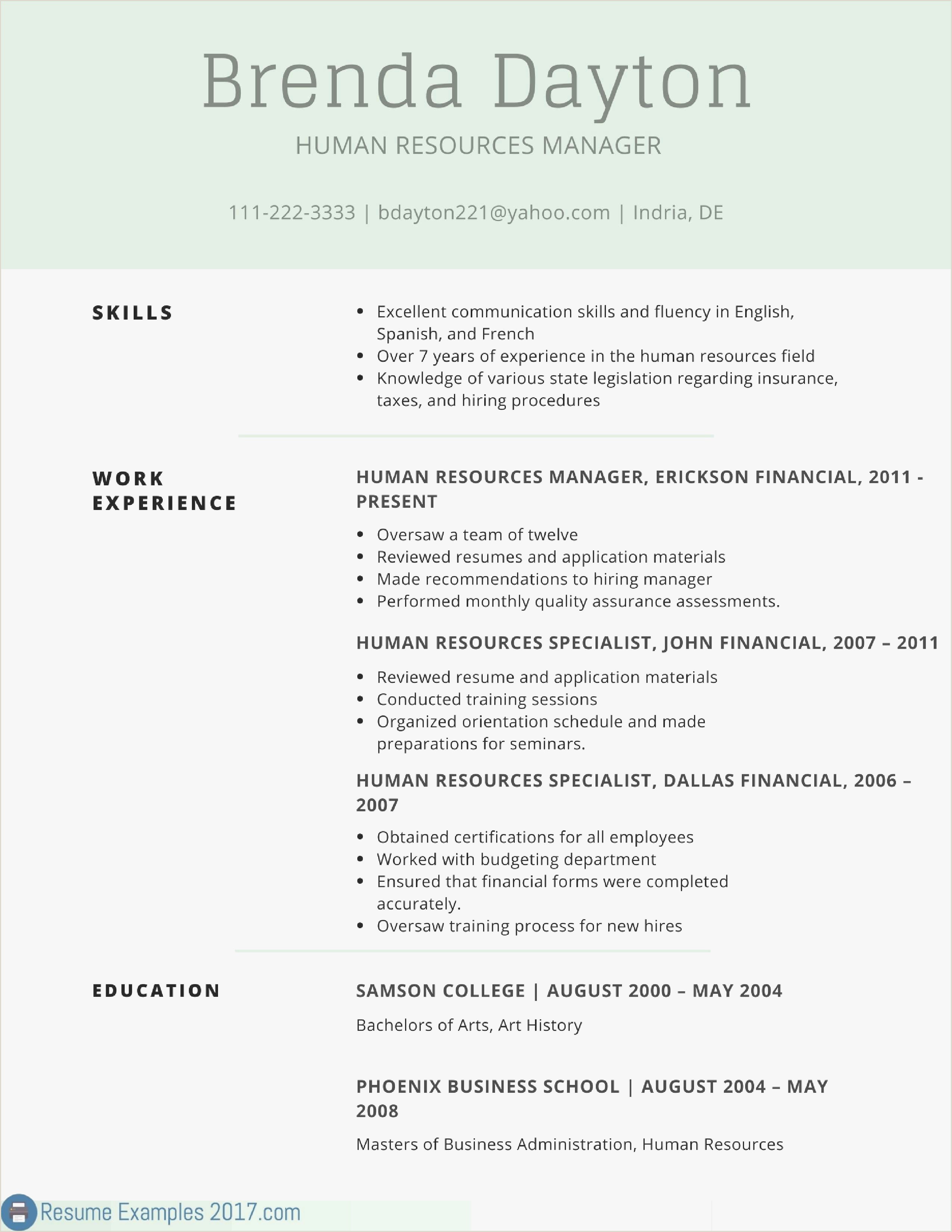 What is Standard Cv format New Best Cv Example