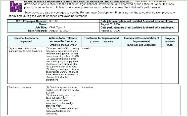 New Quality Improvement Report Example Performance Plan
