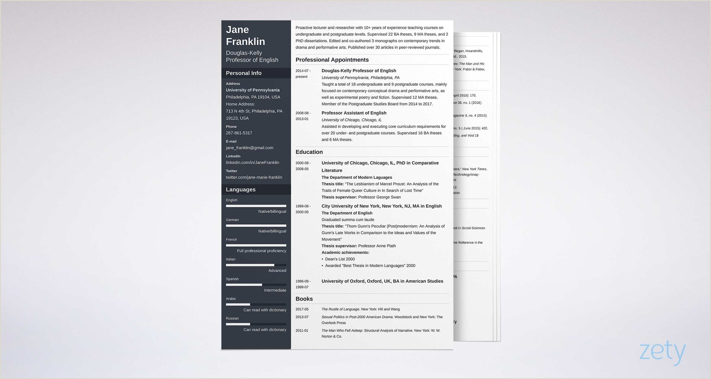 World Standard Cv format Academic Cv Example Template & Writing Guide [with 20